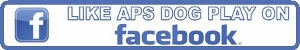 Like APS Dog Play on Facebook!