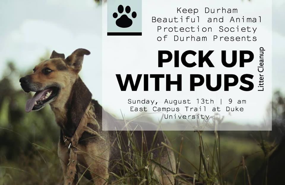 Keep Durham Beautiful Trash Pick Up With Aps Pups The Animal